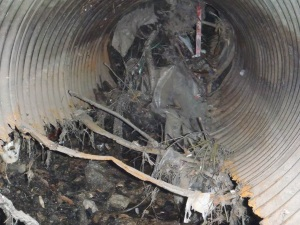 Blocked and corroded corrugated metal pipe
